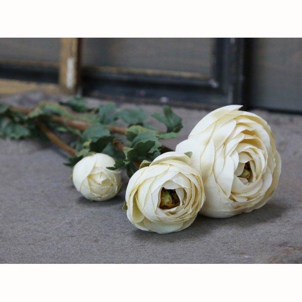 Fleur Ranunkel