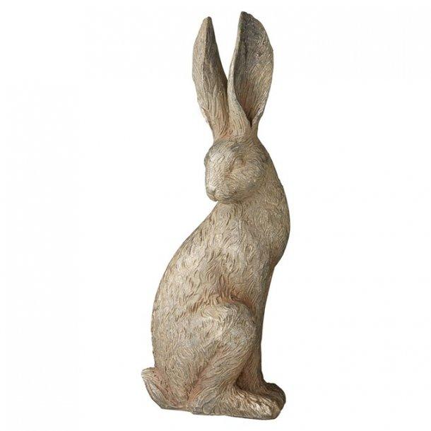 Semina kanin, bronze